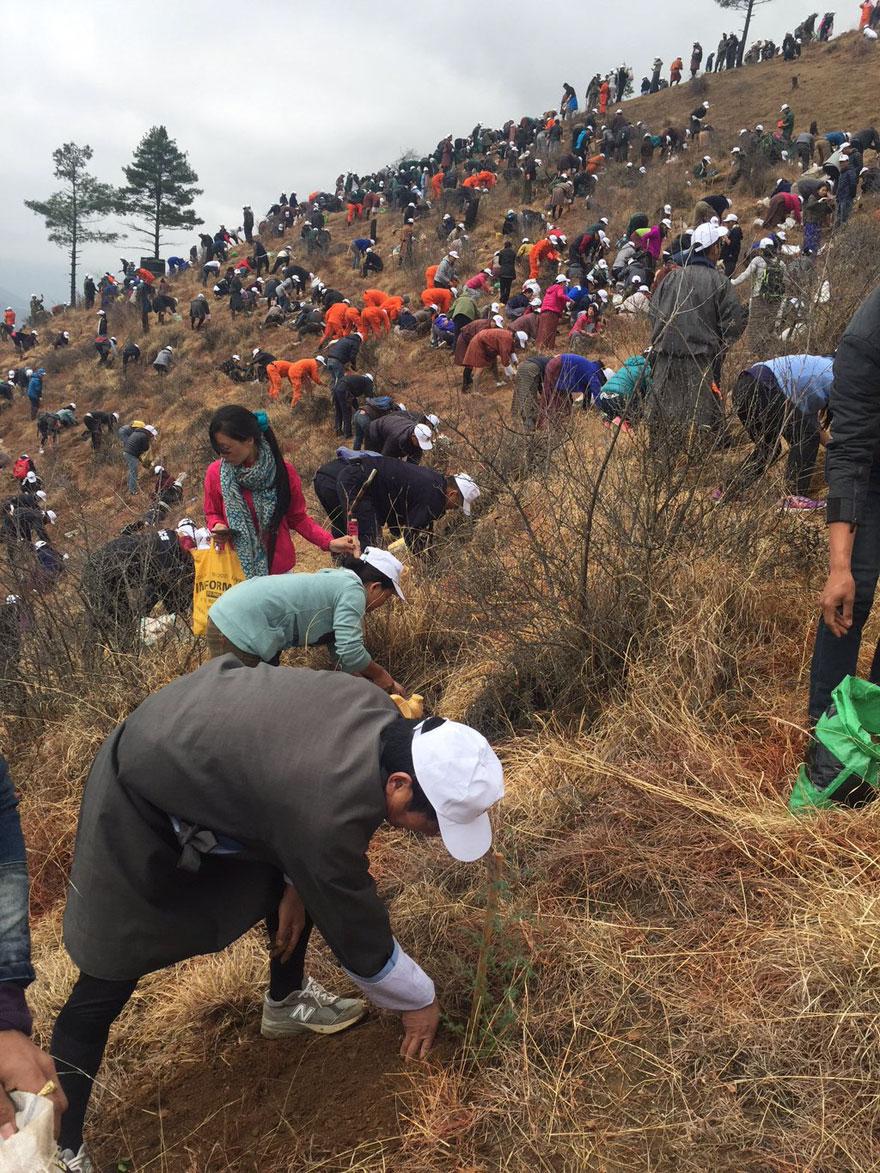 bhutan-prince-plants-trees-jetsun-pema-6 (1)