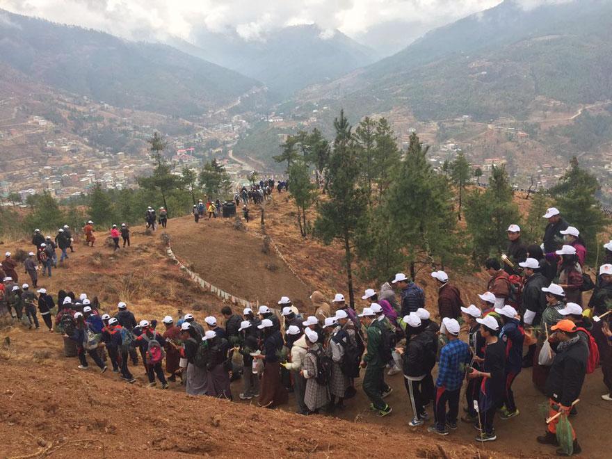 bhutan-prince-plants-trees-jetsun-pema-7