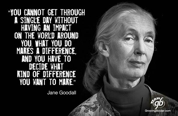 Jane-Goodall-on-Making-a-Difference-611x400