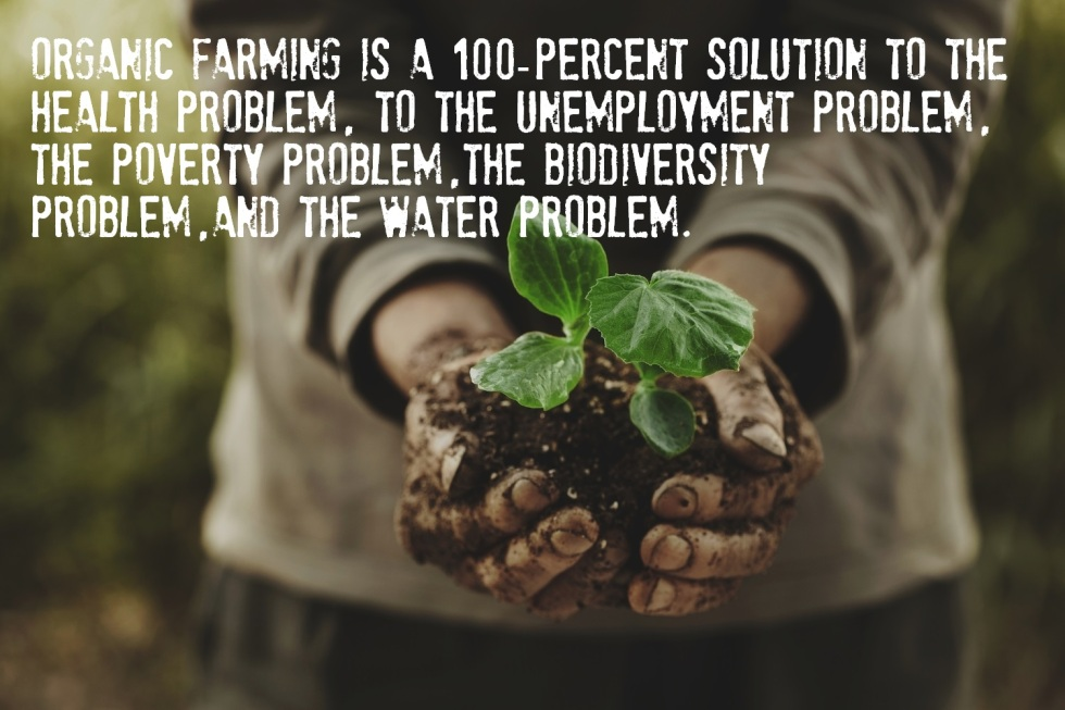 Organic Farming is a 100-percent solution to the health problem, to the unemployment problem, the poverty problem, the biodiversity problem, and the water problem.