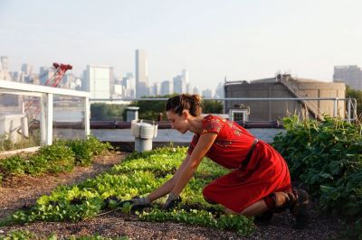 From Floating Food Forests to Vacant Lot Crops, Urban Farming Is Taking Root Across America - Food Is Free Project 3.jpg
